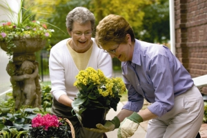 Older-Ladies-Potting-Plants